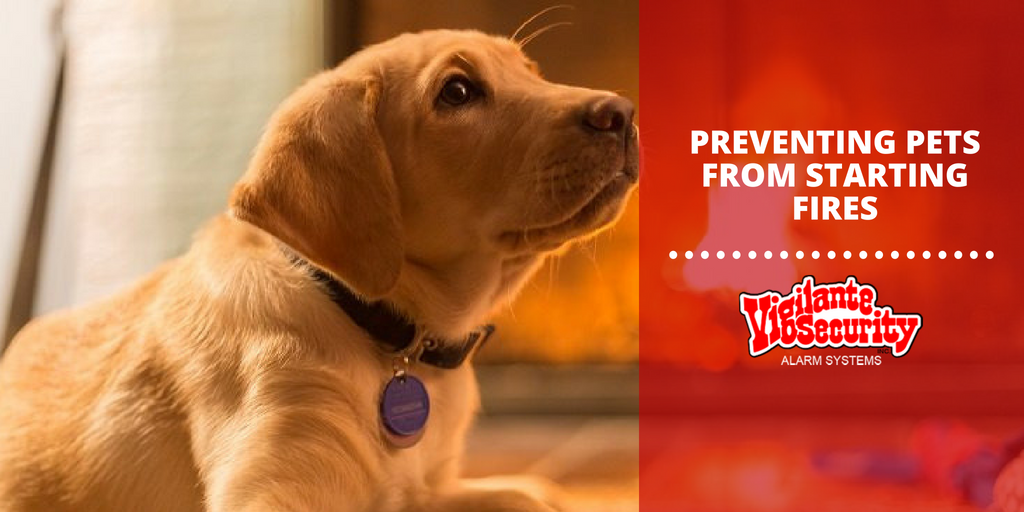 preventing pets from starting fires